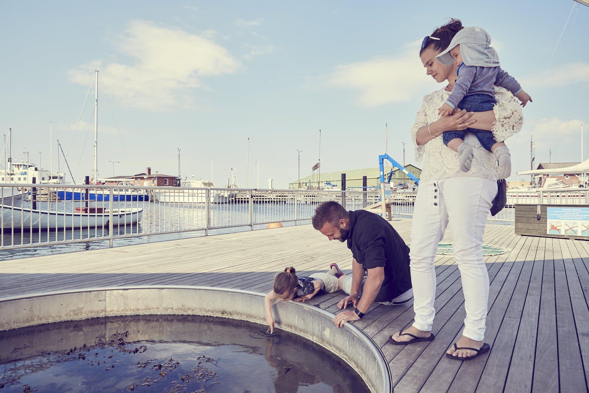 Klap en fisk - en af aktivteterne på havnen